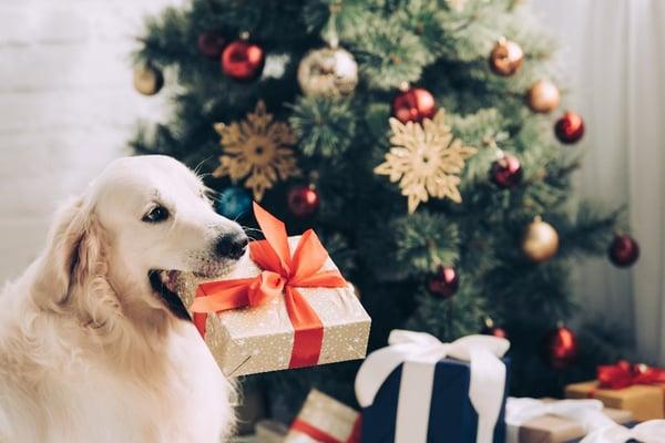 8. CHristmas